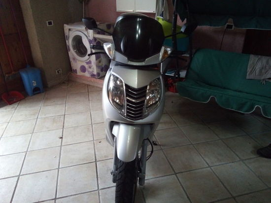 SCOOTER SCOOTER MALAGUTI PASSWORD 250